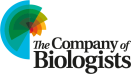 3-cob_logo_rgb_for-web-use
